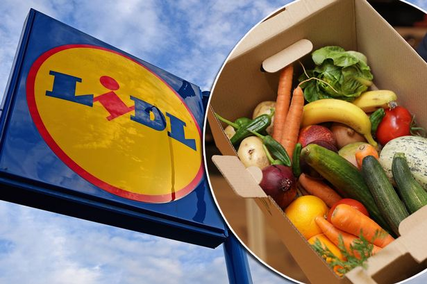 Lidl Is Launching veg Boxes