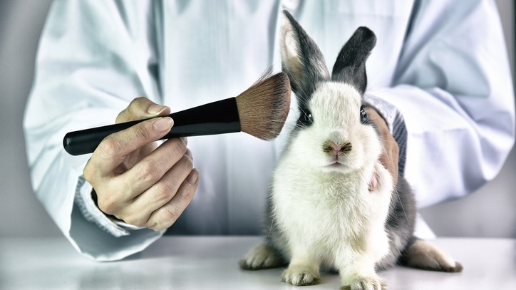 Animal-testing-ban-china-vegan-news.jpg